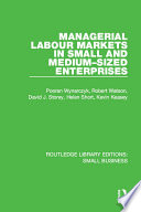 Managerial Labour Markets in Small and Medium Sized Enterprises