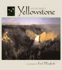 Yellowstone Wild and Beautiful