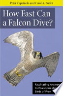 How Fast Can a Falcon Dive