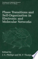 Phase Transitions and Self Organization in Electronic and Molecular Networks