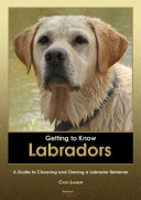 Getting to Know Labradors: A Guide to Choosing and Owning a Labrador Retriever
