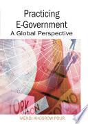 Practicing E Government book