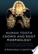 Human Tooth Crown and Root Morphology