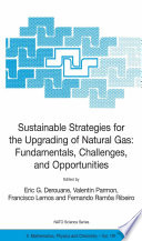 Sustainable Strategies for the Upgrading of Natural Gas  Fundamentals  Challenges  and Opportunities