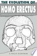 The Evolution of Homo Erectus