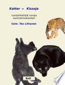 Katter - Kissoja