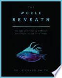 The World Beneath Book PDF