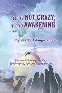 You Re Not Crazy You Re Awakening