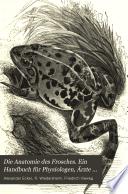 Die Anatomie des Frosches