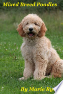 Mixed Breed Poodles