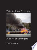 This Brilliant Darkness  A Book of Strangers Book PDF