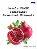 Oracle Fdmee Scripting