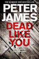 Dead Like You Multi Million Copy Bestselling Detective Superintendent Roy Grace