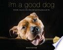 I m a Good Dog