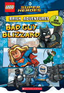 Bad Guy Blizzard Lego Dc Comics Super Heroes Brick Adventures