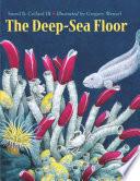 The Deep Sea Floor