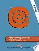 Durango  XIII Censo Industrial  Resultados definitivos  Censos Econ  micos 1989