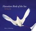 Hawaiian Birds of the Sea