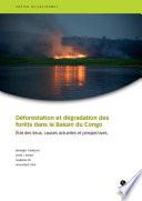 Déforestation et dégradation des forêts dans le Bassin du Congo