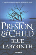 Blue Labyrinth : all of contemporary fiction-returns in preston...