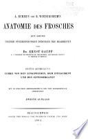 A Ecker s und R  Wiedersheim s Anatomie des frosches auf grund eigener untersuchunger durchaus neu bearbeitet von Ernst Gaupp