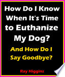 How Do I Know When It S Time To Euthanize My Dog How Do I Say Goodbye