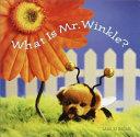 What Is Mr  Winkle