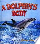 A Dolphin s Body