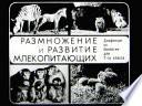 Размножение и развитие млекопитающих (Диафильм)
