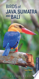 Birds of Java  Sumatra and Bali
