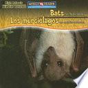 Bats Are Night Animals   Los murci  lagos son animales nocturnos