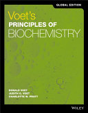 Voet s Principles of Biochemistry Global Edition