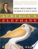 Audubon s Elephant