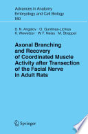 Axonal Branching and Recovery of Coordinated Muscle Activity after Transsection of the Facial Nerve in Adult Rats