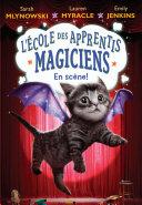 L' Ecole Des Apprentis Magiciens L ?cole De Magie De Perlincourt