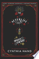 The Afterlife of Holly Chase Book PDF