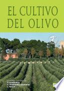 El cultivo del olivo 7   ed
