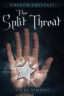 The Split Threat Book PDF
