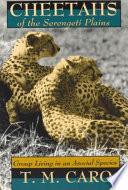 Cheetahs of the Serengeti Plains