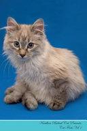 Kurilian Bobtail Cat Presents