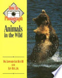 How to Photograph Animals in the Wild