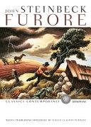 Furore Book Cover