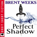 Perfect Shadow  download