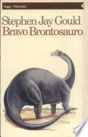 Bravo brontosauro  Riflessioni di storia naturale