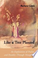 Like a Tree Planted