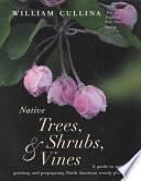Native Trees  Shrubs    Vines