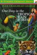 One Day in the Tropical Rainforest