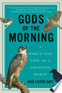 Gods of the Morning  A Bird s Eye View of a Changing World