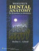 Woelfel s Dental Anatomy