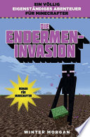 Die Endermen Invasion
